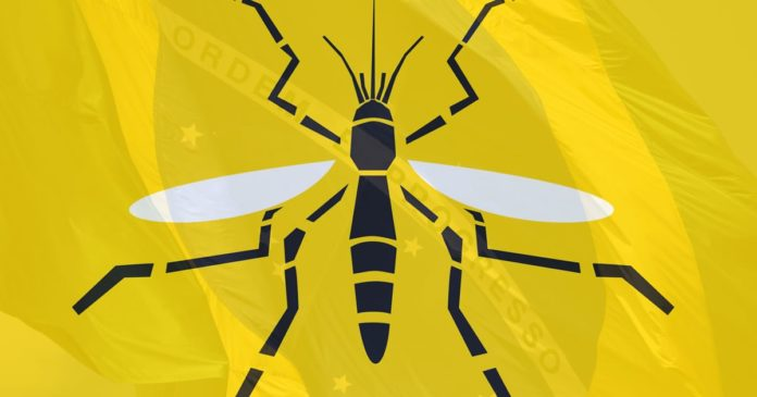Yellow fever symptoms causes and treatment in bengali