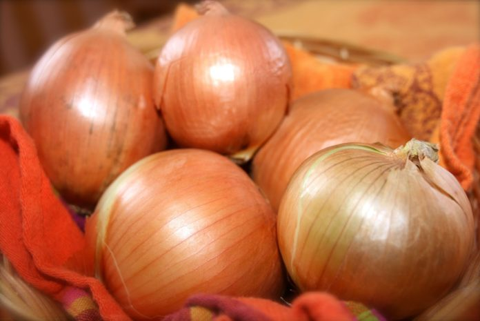 Onion Price may hike 100 rs per kg in bengali