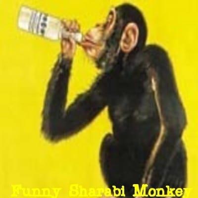 Special sharabi funny jokes 2019 in bengali